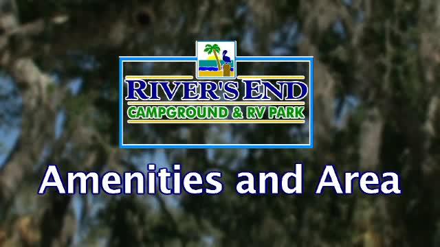Tybee Island Rv Park Georgia